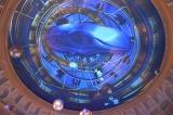プロジェクションマッピング(『VenusFort Christmas Projection Mapping2015「Venus Starium」』点灯式にて撮影) (C)ORICON NewS inc.