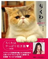 フジテレビ系ドラマ『オトナ女子』に出演するとびきりキュートな猫のちくわの魅力をたっぷり詰め込んだ写真集発売
