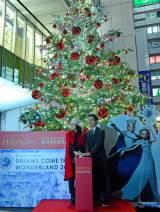 ドリカムがクリスマスツリーを点灯
