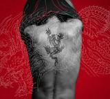 稲葉浩志約5年半ぶりシングル「羽」(来年1月13日発売)「龍が如く盤」
