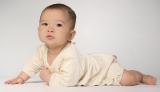 2015年生まれの子どもの名前、男の子は「大翔」女の子は「葵」が1位に