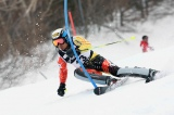 (C)SAJ28承認第00254号 photo:SKI journal