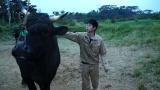 もう1人の主人公、闘牛を愛する青年・平山義樹(C)フジテレビ