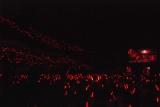 真っ赤に染まる武道館=『モーニング娘。'15コンサートツアー秋〜PRISM〜』 (C)ORICON NewS inc.