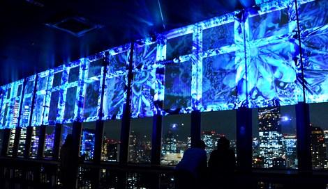 サムネイル 東京タワー(東京・港区)の「TOKYO TOWER CITY LIGHT FANTASIA 2015-2016」(2016年4月3日まで)※3月から桜をモチーフにした「春バージョン」に変更(C)oricon ME inc.