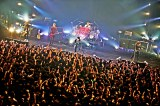 2500人のファンを熱狂させたライブの模様