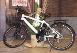 この自転車&徒歩で新潟を目指す