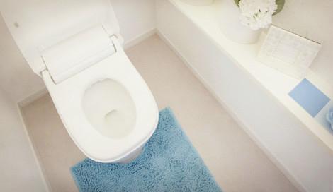 サムネイル トイレ掃除は女性だからこそ見落としやすい場所が…