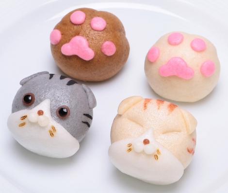 サムネイル 人気のネコ「スコティッシュフォールド」をイメージして作られたおまんじゅうが登場