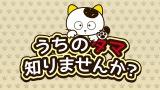 『タマ&フレンズ 〜うちのタマ知りませんか?〜』 22年ぶりの新作アニメが制作決定 (C)Sony Creative Products Inc.