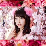 AKB48の10周年記念シングル「君はメロディー」初回限定盤Type-C