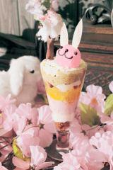 桜とうさぎの贅沢パフェ登場!