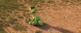 ディズニー/ピクサー最新作『アーロと少年』本編映像が公開 (C)2015 Disney/Pixar. All Rights Reserved.