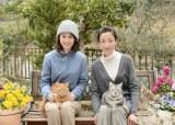 宮沢りえ主演、連続ドラマW『グーグーだって猫である2』(6月放送予定)に前田敦子の出演が決定(C)WOWOW