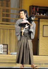 中村獅童の愛犬エルちゃんがオーディション合格