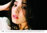 『新木優子オフィシャルカレンダー2016.4-2017.3』