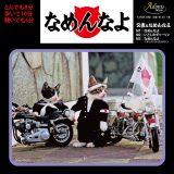 又吉&なめんなよ81年のデビュー曲「なめんなよ」が初CD化