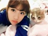 愛猫との2ショット=『たかみな撮!AKB48卒業フォト日記「写りな、写りな」』より
