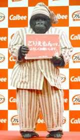 CMにも登場するごりえもん=『朝にいいこと カルビー フルグラ』新CM発表会 (C)ORICON NewS inc.