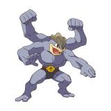 あばれる君が投票したカイリキー(C)Nintendo・Creatures・GAME FREAK・TV Tokyo・ShoPro・JR Kikaku(C)Pokemon (C)2016 ピカチュウプロジェクト
