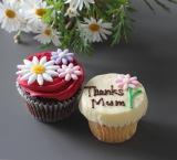 「ローラズカップケーキ」の花束のような母の日セット
