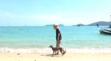 自宅付近・愛犬と散歩