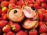チーズタルト『PABLO mini』シリーズに苺味が秋葉原限定で登場