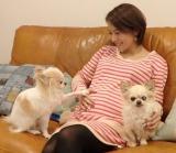 第1子妊娠時の神戸蘭子(写真はブログより)