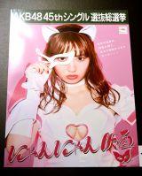 『AKB48選抜総選挙ミュージアム』で展示されているにゃんにゃん仮面の選挙ポスター (C)ORICON NewS inc.