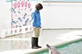 しながわ水族館とサンシャイン水族館の全面協力のもと撮影
