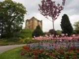 EU離脱でポンド急落のイギリスを旅行するならいまがおすすめ! 写真はギルフォード城跡(C)ORICON NewS inc.