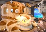 三鷹の森ジブリ美術館がリニューアル (C)ORICON NewS inc. (C)Museo d'Arte Ghibli (C)Studio Ghibli
