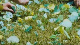 東京・練馬区の地上波CM第2弾「Yori Dori Midori 練馬 願いの木篇」メイキングカット