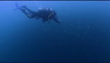 31日放送の日本テレビ系『世界の果てまでイッテQ!』 ではオーシャンズ金子こと金子貴俊が世界初!?奇跡の瞬間を目撃(C)日本テレビ