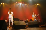 アコースティックアレンジで全12曲を熱唱したコブクロ