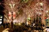 シャンパンゴールドの照明で街行く人を魅了する「丸の内イルミネーション」(過去開催時の様子)