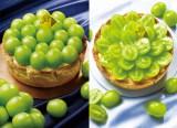 PABLOから岡山県産シャインマスカット「晴王」を使ったチーズタルト2種が今年も登場