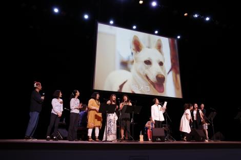 『いぬねこなかまフェス 2016 〜動物愛護週間に集まろう〜』の模様
