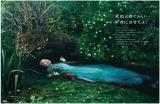 宝島社の企業広告「死ぬときぐらい好きにさせてよ」2016年1月