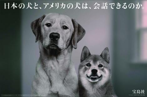 宝島社の企業広告「日本の犬と、アメリカの犬は、会話できるのか。」2010年9月