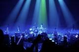 UVERworld 『Roots(PREMIUM LIVE on Xmas 2015 at Nippon Budokan)』Short Ver.より