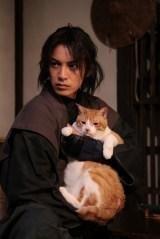 猫役の金時は、本作でデビュー (C)2017「猫忍」製作委員会