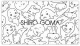"""シロとゴマちゃんが癒し系コンビ""""SHIRO GOMA""""を結成"""