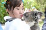 コアラと一緒に撮影も