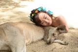 たくさんの動物と一緒に撮影=オーストラリアでリゾートウェディングを行ったキンタロー。