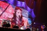 『日テレHALLOWEEN LIVE 2016』に出演したSCANDAL(PHOTO:山内洋枝)