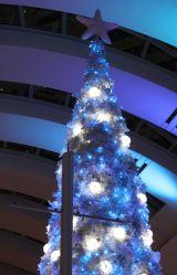 クリスマスツリー「Ocean Fantasy Tree〜君と100回目の恋〜」の点灯式の模様 (C)ORICON NewS inc.