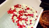 11月26日は「いい風呂の日」。美容に良いバスタイムのポイントは?
