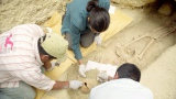 BSプレミアム 知られざる古代文明シリーズ「発見!マヤ・密林に隠されたピラミッドと謎の石舞台」より (C)NHK