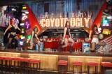 コヨーテガールによるダンス=『COYOTE UGLY SALOON ROPPONGI』オープンメディア発表会 (C)ORICON NewS inc.